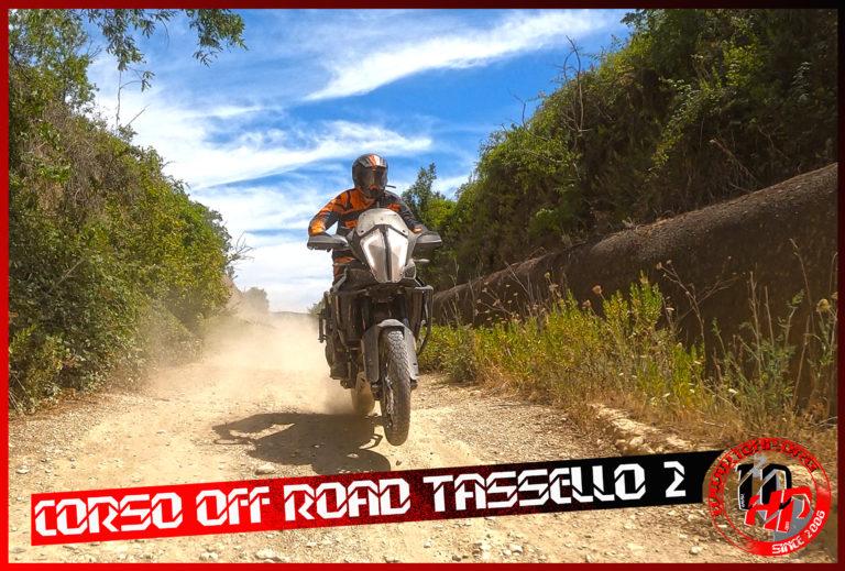TASS2002